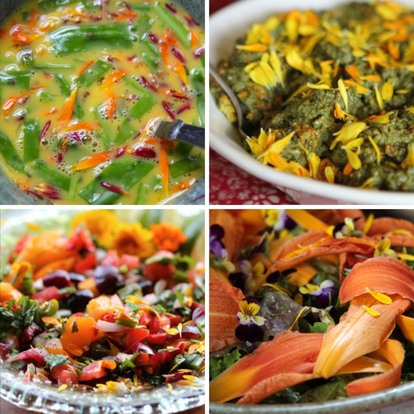 Dishes made with calendula flowers