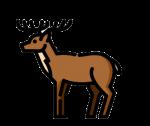Кровь оленя польза – Зачем северные народы пьют кровь оленей
